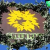 Green Man Festival 2012 – Galles, Glasnusk Park