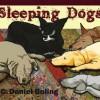 C.Daniel Boling – Sleeping Dogs