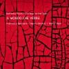 """Raffaello Pareti """"The Roar at The Door"""" – Il mondo che verrà"""