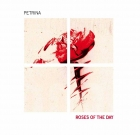 Petrina – Roses of the Day