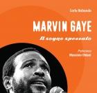 Soul Books, uscito il libro su Marvin Gaye