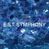 E.S.T. Symphony