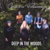 Crash n Recovery – Deep In The Wood