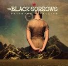 The Black Sorrows – Faithful Satellite
