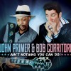 John Primer & Bob Corritore – Ain't Nothing You Can Do!