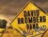 David Bromberg Band – Big Road