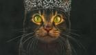 Bonaveri – Il Bardo e il Re dei gatti